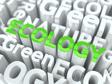 Ecology - Green Word.