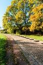 Free Staircase In The Autumn Park Stock Photos - 28592073
