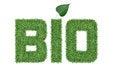 Free Text BIO Of Green Grass Stock Photo - 28594010