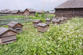 Free Hives In The Apiary. Royalty Free Stock Photo - 28598435