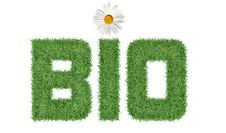 Free Text BIO Of Green Grass Royalty Free Stock Photography - 28593997