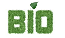 Free Text BIO Of Green Grass Stock Photo - 28594010