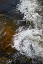 Free Rapids In A Small Creek Royalty Free Stock Photo - 2864015