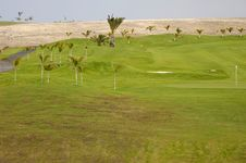 Free Exotic Golf Course Stock Photography - 2862782