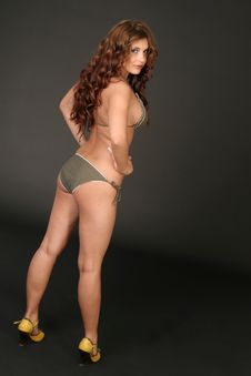 Backside Of Bikini-Girl Royalty Free Stock Photos