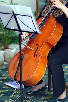Playing Violoncello Stock Photo