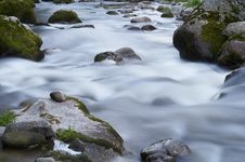 Small Creek With Rocks Royalty Free Stock Images