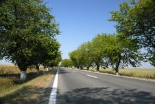 Empty Road With Trees An Blue Royalty Free Stock Images