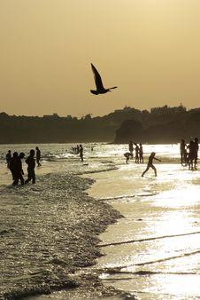 Free Silhouettes On The Beach Stock Photos - 2868663
