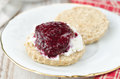 Free Scone With Goat Cheese And Jam On A Plate Closeup Royalty Free Stock Photography - 28602687