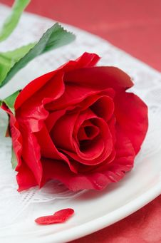 Free Red Rose On A White Plate, Selective Focus, Closeup Stock Images - 28602584