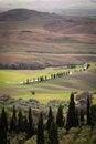 Free Tuscan Landscape Stock Image - 28612281