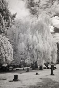 Infrared Photo Of A Cemetery Stock Photography