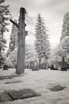 Infrared Photo Of A Cemetery Stock Photo