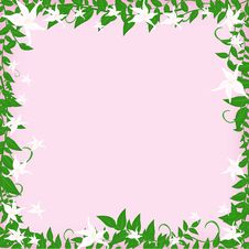 Free Frame With White Flowers Stock Photos - 28615093