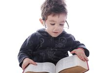 Free Little Boy Reading A Book Stock Images - 28616944