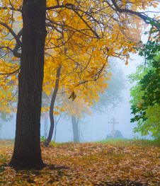Free Autumn Park Stock Photos - 28618883