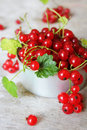 Free Red Currant Berries With Green Leaves Stock Images - 28620624