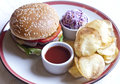 Free Burger Royalty Free Stock Photography - 28621147