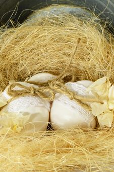 Easter Egg Nest... Royalty Free Stock Photos