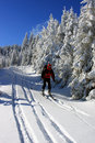 Free Skier Descending From The Mountain Stock Photography - 28632742