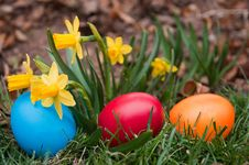 Free Easter Eggs Royalty Free Stock Photo - 28642705