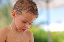 Free Portrait Of The Boy Royalty Free Stock Image - 28644826