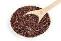Free Black Purple Rice Royalty Free Stock Image - 28653606