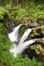 Free Sol Duc Falls Royalty Free Stock Photos - 28658868