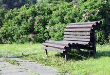 Free Romantic Bench Royalty Free Stock Images - 28651289