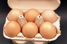 Free Eggs In An Egg Cartot Royalty Free Stock Image - 28653556