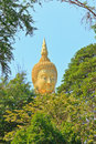 Free Buddha Head In A Tree Stand Stock Photography - 28662352