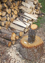 Free Stack Of Fresh Firewood Stock Photography - 28668332