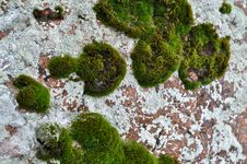 Free Rocks And Lichen. Stock Image - 28668731