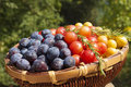 Free Plums In Basket Royalty Free Stock Image - 28674776