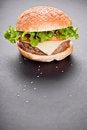 Free Burger Royalty Free Stock Photos - 28675128