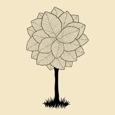 Free Tree Beautiful For Your Design Stock Images - 28672914