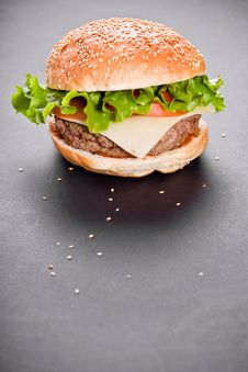 Free Burger Royalty Free Stock Photos - 28675128