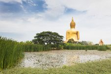 Free Big Buddha Statue Royalty Free Stock Images - 28677489