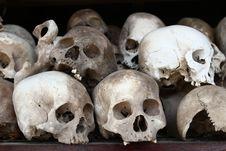 Skulls Stock Images