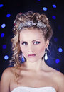 Free Portrait Of A Beautiful Young Bride Stock Photography - 28680832