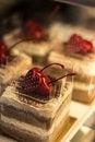 Free Blackforrest Cake Royalty Free Stock Image - 28698366