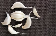Fresh Organic Garlic Cloves On Jute Cloth Royalty Free Stock Photography