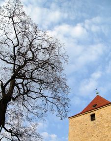 Free Tree, Tower And Cloudscape Stock Photos - 2872023