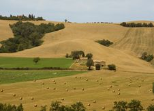 Rolling Hills In Tuscany Royalty Free Stock Images