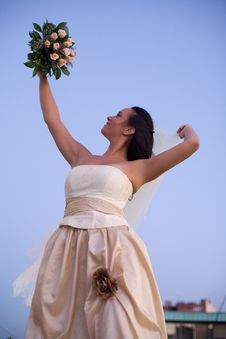 Free Bride And The Sky Stock Photos - 2872743