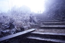 Free Mt Mitchell In Rime Ice Stock Photos - 2874003