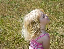 Free Young Girl On A Sunny Day Royalty Free Stock Photography - 2879307