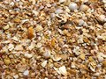 Free Background From Sand And Cockleshells Royalty Free Stock Photography - 28700937