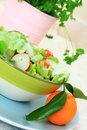 Free Healthy Salad On The Blue, Pastel Plate Royalty Free Stock Photos - 28705018